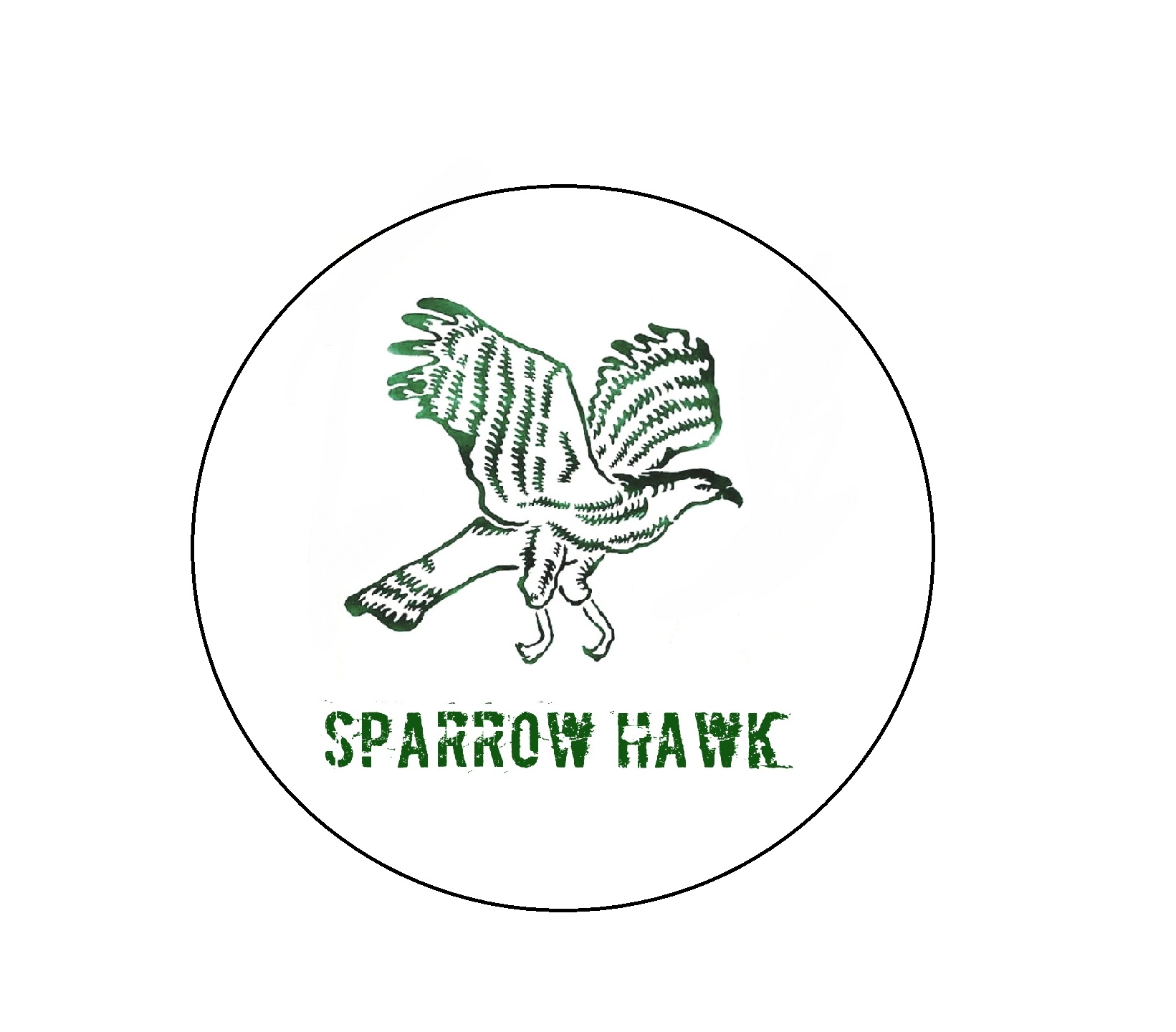 SparrowHawk Motors