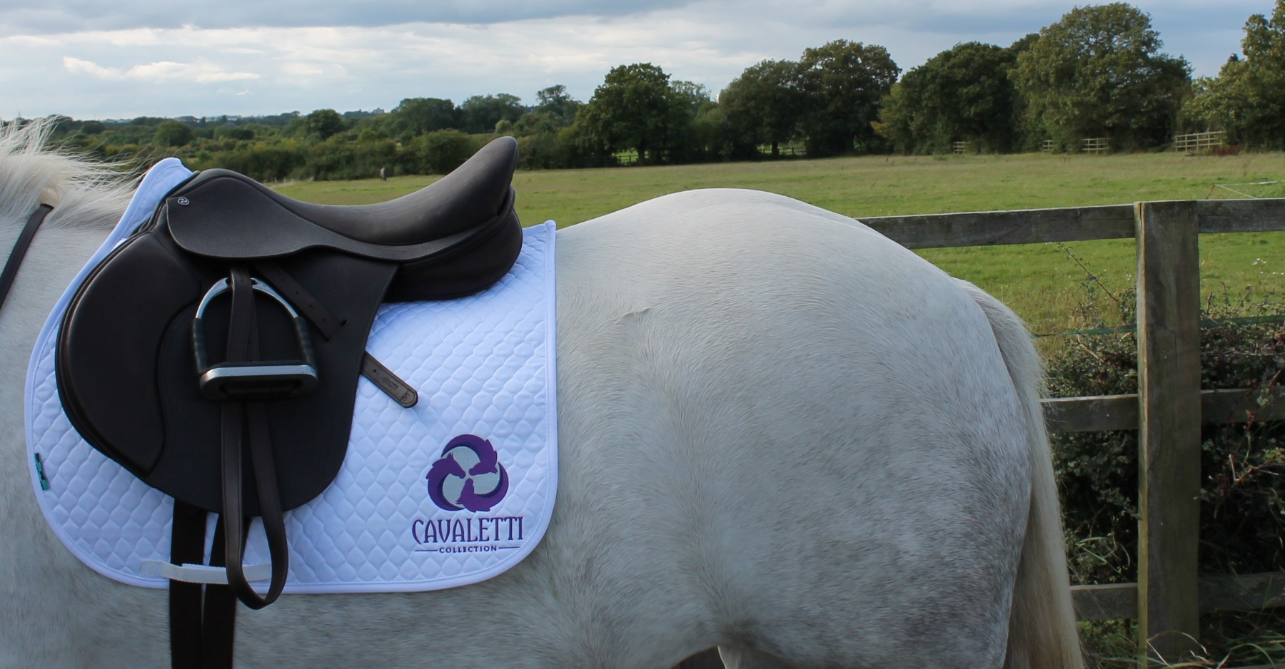 Cavaletti Collection GP Saddle
