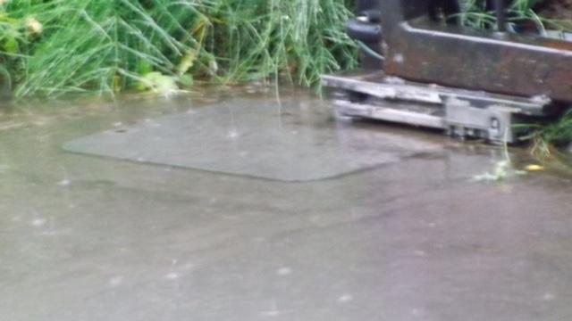flooded came frog motor