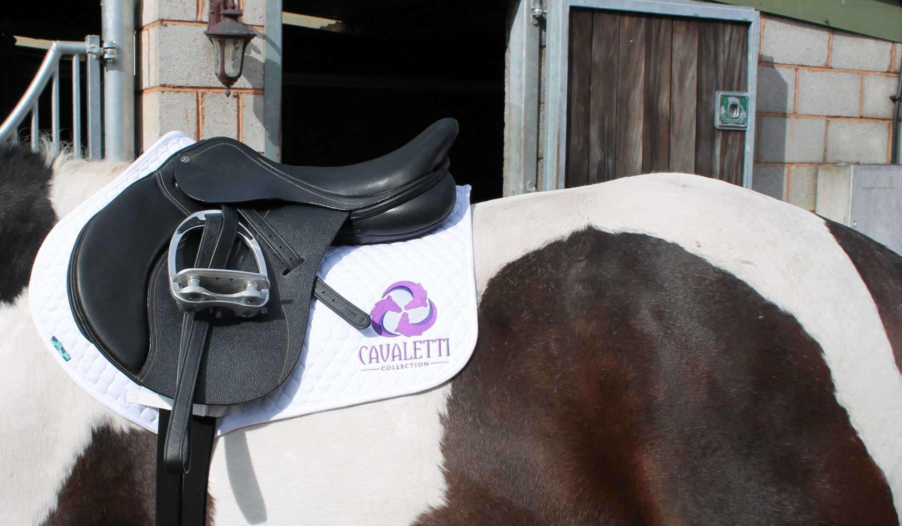 Cavaletti Collection Jump Saddle