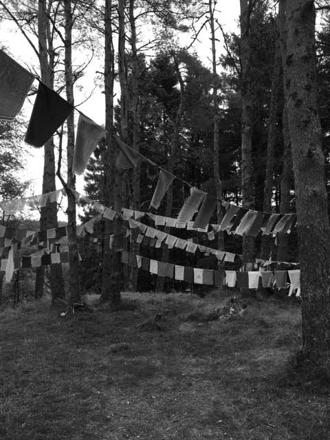 Prayer Flags on a Faery Mound