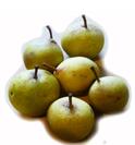 Pears 1jpg