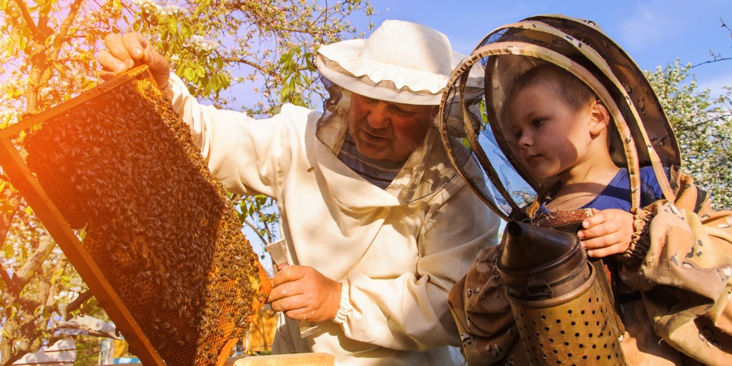 grandpa-beekeeper-passes-his-experience-little-grandson-picture-id606206884jpg