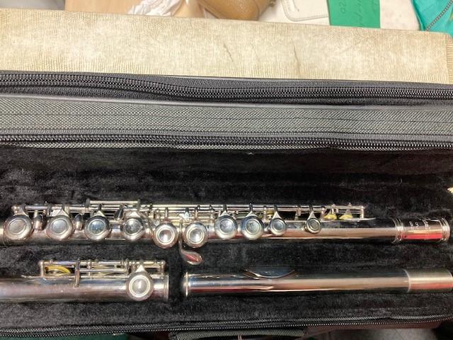 W6 - Flute cat 1jpg