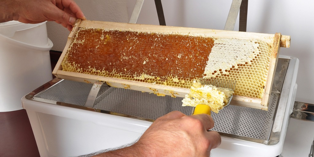 uncapping-of-honeycomb-at-plastic-tub-picture-id953763924jpg