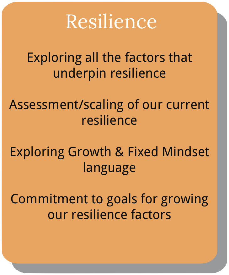 Information about course module 6. Resilience.