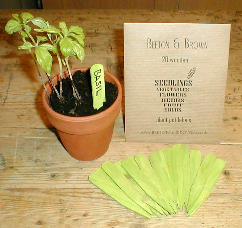 Proper labels TWENTY Rustic wooden plant pot and tray blank labels & pencil