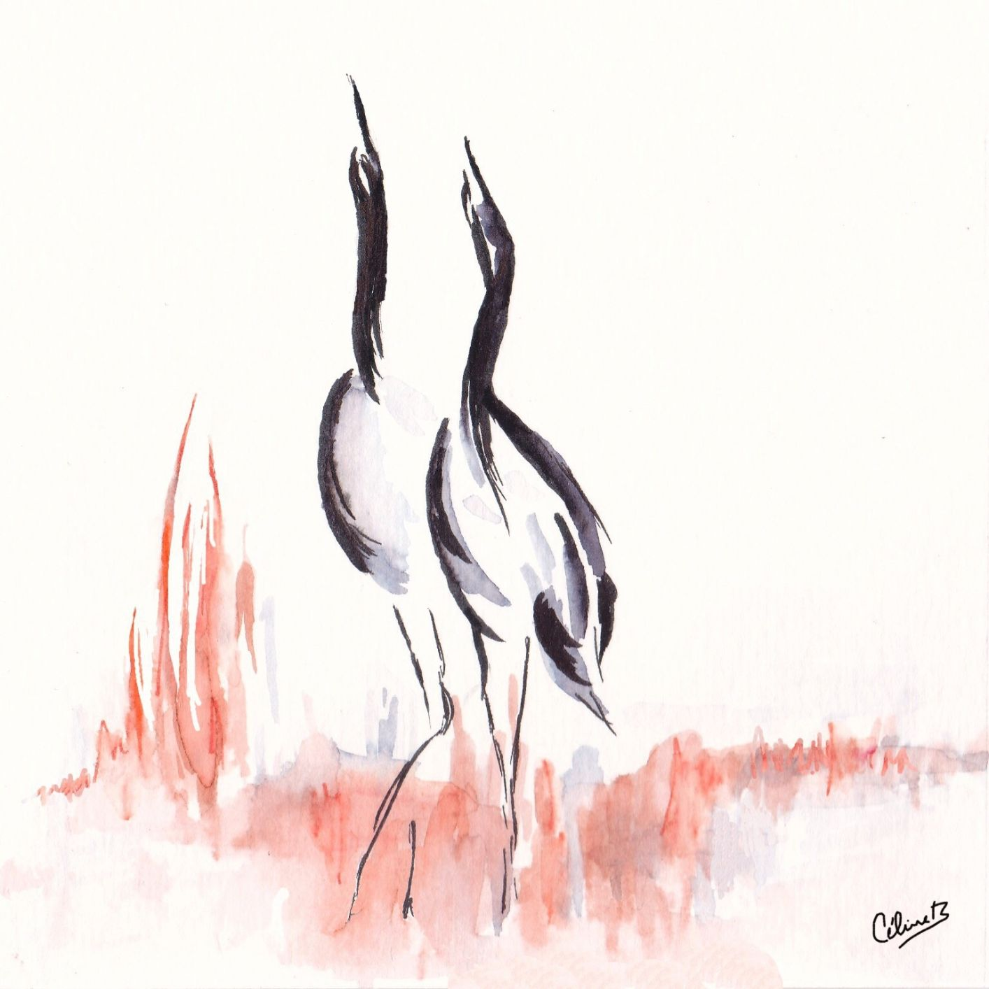 Japanese collection: Japanese Cranes