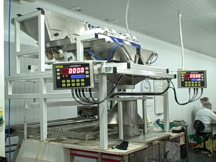 Custom design Twin Batch Weigher from Proweight Limited.